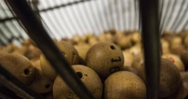 Cómo comprobar la lotería del Niño 2017 por Internet