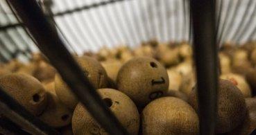 Cómo comprobar la lotería de Navidad 2016 por Internet