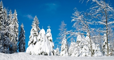 Google celebra el Solsticio de invierno