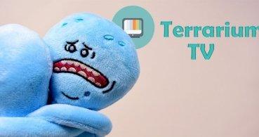 La app Terrarium TV dejará de funcionar