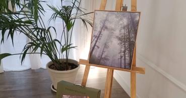 Frame Speakers, los altavoces con diseño de cuadro de Energy Sistem
