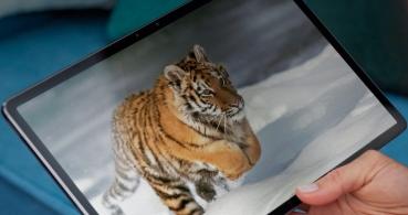 Lenovo Tab P11 Pro y M10 HD Gen 2: así son las nuevas tablets Android de Lenovo