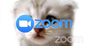 Cómo poner el filtro del gato en Zoom