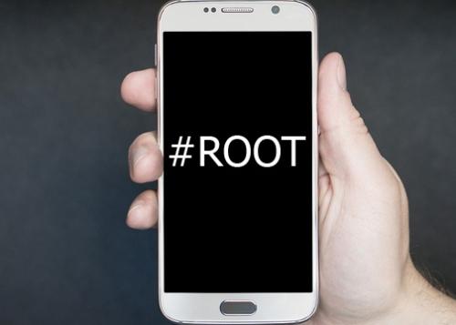 root-720x360