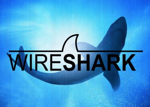 wireshark-logo-720x388