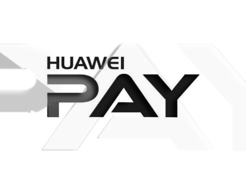 pay-720x360