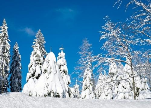 invierno-doodle-google-720x400