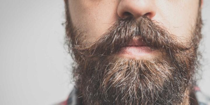 barba-1300x650