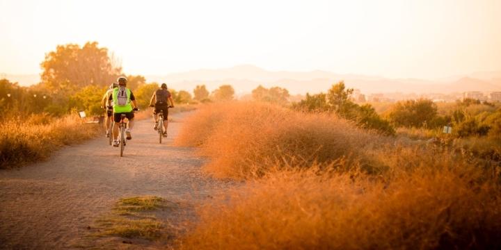 grupo-bicicletas-1300x650
