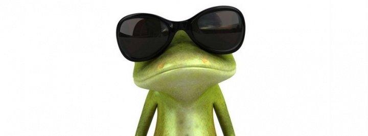 rana-con-gafas-de-sol-231014