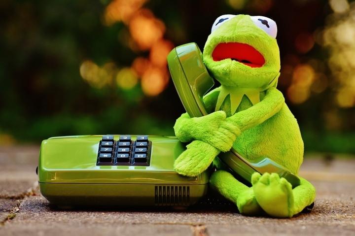 rana-telefono-720x479