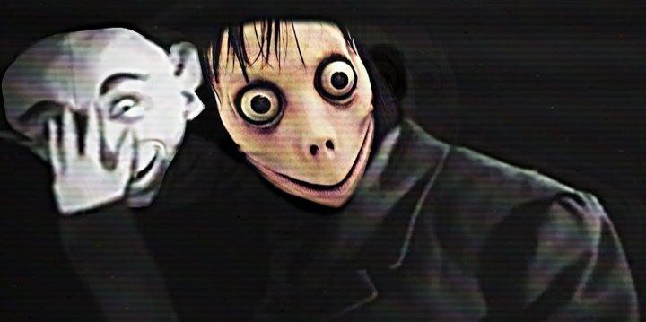 momo-imagen-720x359