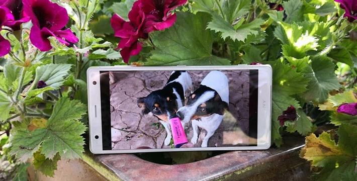 Review: Sony Xperia XZ2, un móvil equilibrado que destaca por su pantalla y su cámara