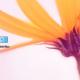 Cómo activar el modo Dios en Windows 10