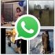 Dónde encontrar vídeos de humor para WhatsApp