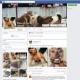 """Facebook deniega el cierre de la página """"Pelea de perros"""""""