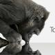 Gorilla Glass 4 es el más resistente contra las caídas