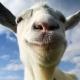 Goat Simulator, el juego para hacer el cabra, llega a PS3 y PS4