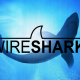 Wireshark 2.2.2 corrige múltiples errores