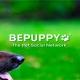 Bepuppy, la red social para mascotas