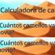 """""""¿Cuántos camellos vale tu novia?"""", una calculadora viral rodeada de polémica"""
