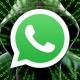 WhatsApp crea fallos de seguridad para dar acceso a los gobiernos, según Telegram