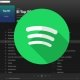 Spotify podría añadir vídeos musicales completos de cada canción