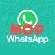 WhatsApp Transparent, el mod para tener fondo transparente