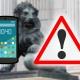 Miembros del Gobierno hackeados: acceso a sus móviles y posterior bloqueo